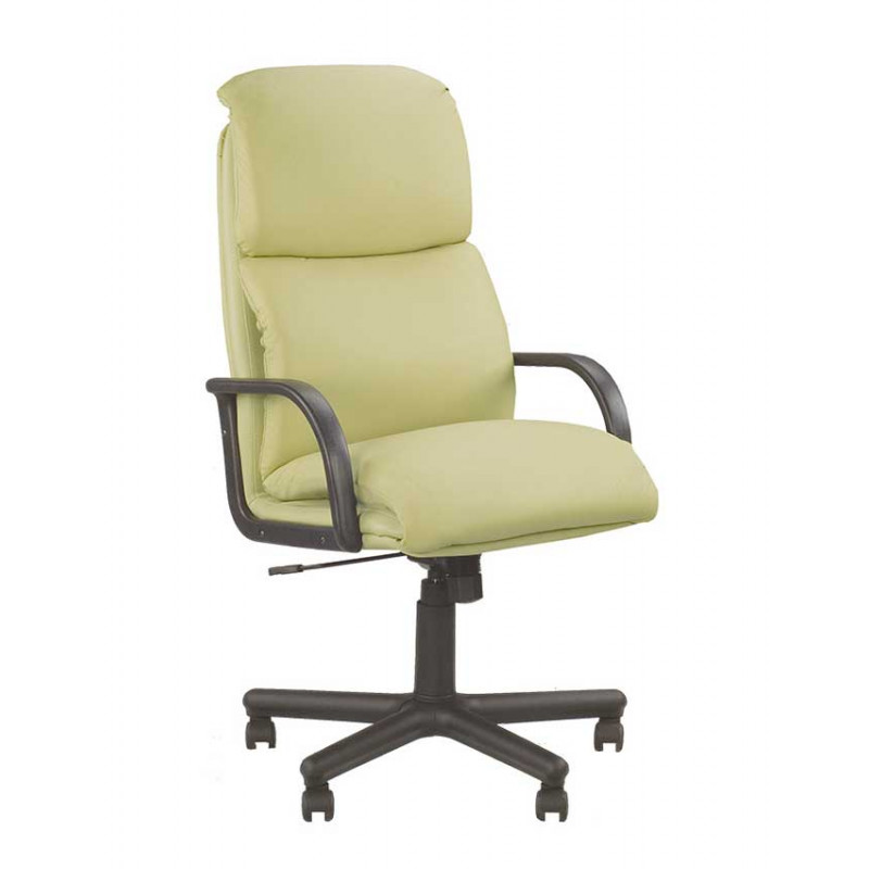 Шкіряне крісло керівника Nadir (Надір) SP, LE